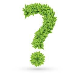 adef6-leaf-question-mark
